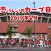 カープ日誌 鯉恋 2017年6月