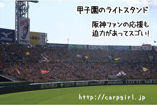 甲子園 阪神応援