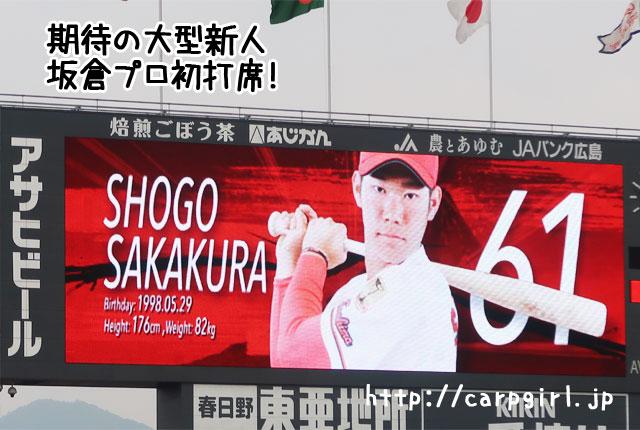 カープ 坂倉 61