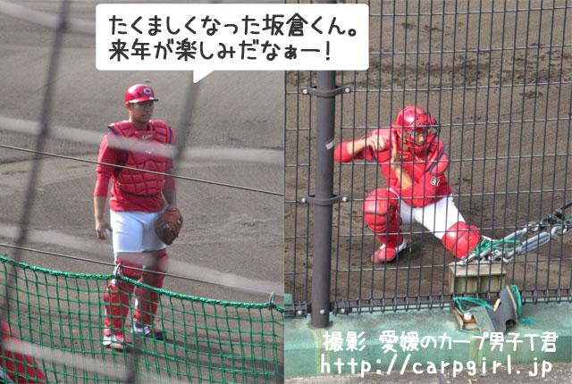 カープ 日南キャンプ 坂倉選手