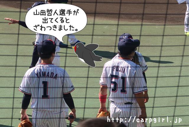 ヤクルト 山田哲人