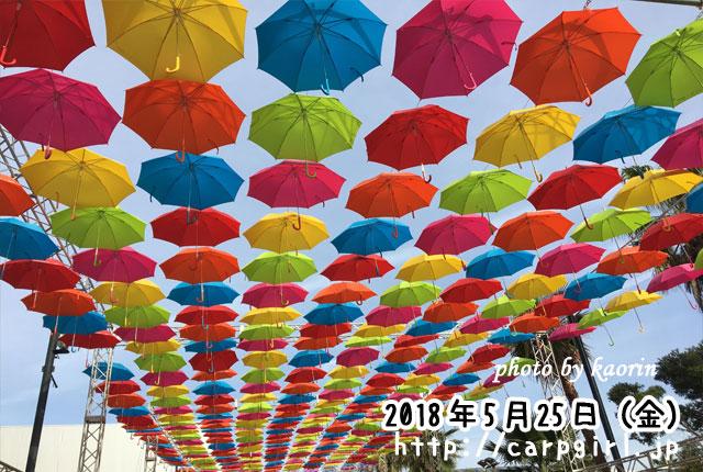 マツダスタジアム 傘まつり