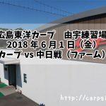 広島東洋カープ 由宇練習場