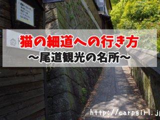 尾道猫の細道への行き方