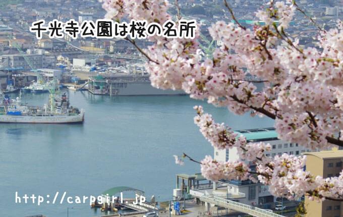 尾道千光寺公園は桜の名所